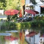 Hotel Pictures: Hotel Zur Mühle, Staatsbad Brückenau