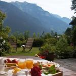 Hotel Pictures: All Suite Hotel Garni Leithner, Pertisau