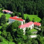 Photos de l'hôtel: Hotel Landsitz Pichlschloss, Mariahof