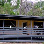 Zdjęcia hotelu: Kookaburra Cottage, Halls Gap