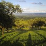 Hotel Pictures: El Añadío, Vilches