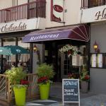 Hotel Pictures: Hôtel Le Marais Restaurant Au Petit Challandais, Challans