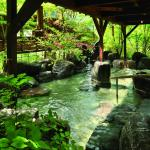 Tsuetate Onsen Hotel Hizenya,  Oguni