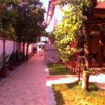 Vila Popoiu,  Costinesti