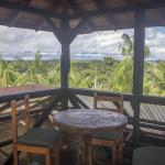 Hotel Pictures: Waira Selva Hotel, Puerto Nariño