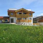 Hotel Pictures: Villa Mandl, Maishofen