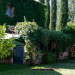 Il Lupinaio, Manciano