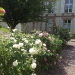 La Chambre De Margot - Chambres d'hôtes, B&B,  Honfleur