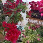 Hotel Pictures: Mare E Monti, Porto Pollo