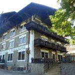 Hotel Pictures: Hotel Lesní Krčma, Loučovice