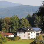 Hotel Pictures: Pension Waldeck, Langdorf