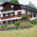 Apartement Friedheim Mit Hotelanbindung,  Beatenberg
