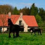 Hotel Pictures: B&B Heerlijkhyd, Hertsberge