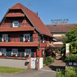 Hotel Pictures: Hôtel Restaurant Ritter'hoft, Morsbronn-les-Bains