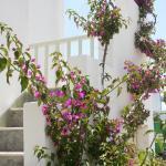 Korali Hotel and Apartments, Antiparos Town