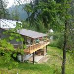 Hotel Pictures: Top Hat Terrace Vacation Rental, Revelstoke