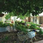 Hotellikuvia: Hahndorf Oak Tree Cottages, Hahndorf