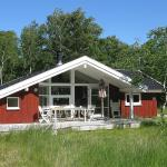 Three-Bedroom Holiday Home Langvarigheden 05,  Østerby