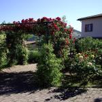 Country House Pro Vobis, Tordibetto