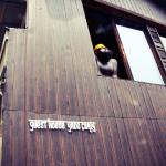 Guesthouse Yadocurly,  Onomichi