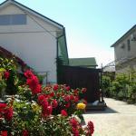 Guest House Kalinina Street 133,  Yeysk