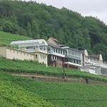 Hotel Pictures: Panorama Hotel und Restaurant Schloßberg, Alzenau in Unterfranken