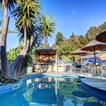 Anchor Lodge Motel,  Coromandel Town