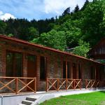 Guest House on Erekle, Borjomi