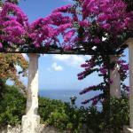 Dépendance in villa con giardino, Capri