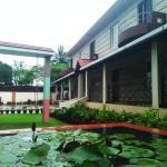 Lotus The Cottages, Madikeri