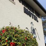 Fotografie hotelů: The Pioneer Way Motel, Springwood