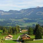 Hotel Pictures: Ferienwohnung Karin, Bolsterlang
