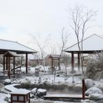 Hotel Pictures: Beiguo Hot Spring Hotel, Lindian