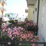 Hotel Villa dei Gerani, Rimini