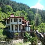 Hotel Pictures: Villa Persenk, Lyaskovo