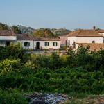 Casa Vacanze Etna, Piedimonte Etneo