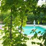Hotel Pictures: L'Islo Bamboo, Saumane-de-Vaucluse
