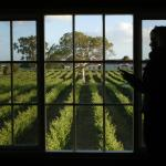 Foto Hotel: Highbank Country Accommodation, Coonawarra