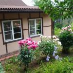 Cottage in Novye Eltsy,  Novie Eltsy