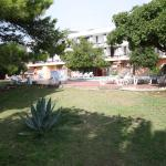 Hotel Kamelija, Tivat