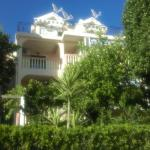 Apartment Kovacevic,  Petrovac na Moru