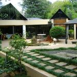 The Olive Tree Guest House, Johannesburg