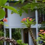 Hillside Relax Villa, Kandy