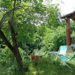 La Mia Casa nel Bosco,  Netro