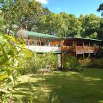 Fotos de l'hotel: Red Mill House in Daintree, Daintree