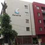 Apartment Coralia,  Mamaia