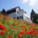 Hotel Pictures: Waldhotel Schinkenwirt, Olsberg