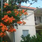 Hotellikuvia: Apartment Ranka, Trebinje