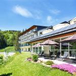 Hotel Pictures: Belchenhotel Jägerstüble, Aitern