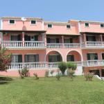 Pink House Socrates, Vitaládes